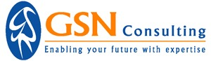 GSN Consulting